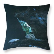 Realm Of The Storyteller Throw Pillow