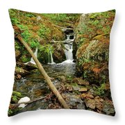 Reany Falls 2 Throw Pillow