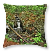 Reany Falls 3 Throw Pillow