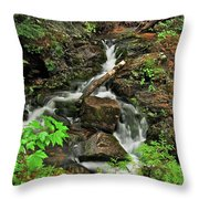 Reany Falls 5 Throw Pillow