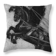 Rearing Horses Throw Pillow by Eric Fan