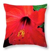 Reb Hibiscus Flower Throw Pillow