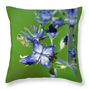 Receiving Signals From Above Throw Pillow