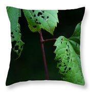 Reciprocal Change Throw Pillow