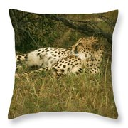 Reclining Cheetah Profile Throw Pillow