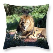 Reclining King Throw Pillow