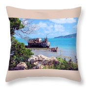 Recycled In Grenada Throw Pillow