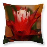 Red 3 Throw Pillow