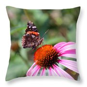 Red Admiral 1543 Throw Pillow