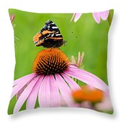 Red Admiral And Cone Flowers Throw Pillow