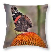 Red Admiral Butterfly On Coneflower              July              Indiana Throw Pillow