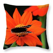 Red Admiral Nectaring On Tithonia Throw Pillow