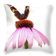 Red Admiral On Echinacea Throw Pillow