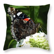 Red Admiral - Underside Throw Pillow