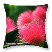 Red Albizia Throw Pillow
