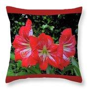 Red Amaryllis Trio Throw Pillow