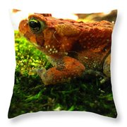 Red American Toad Throw Pillow
