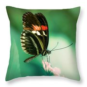 Red And Black Butterfly On White Flower Throw Pillow