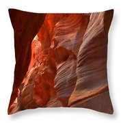 Red And Brown Swirling Sandstone Throw Pillow