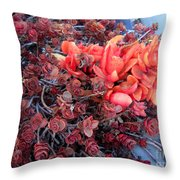 Red And Burgundy Succulent Plants Throw Pillow