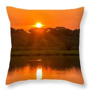Red And Orange Jungle Sunset Throw Pillow