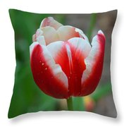 Red And White Bloom Throw Pillow