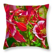 Red And White Columbine At Pilgrim Place In Claremont-california Throw Pillow