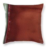 Red And White Stripe Throw Pillow