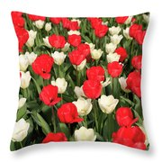 Red And White Throw Pillow by Tracy Hall