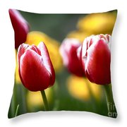 Red And White Tulips Large Canvas Art, Canvas Print, Large Art, Large Wall Decor, Home Decor Throw Pillow