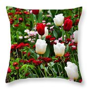 Red And White Tulips With Red And Pink English Daisies In Spring Throw Pillow