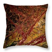 Red And Yellow Abstract Throw Pillow