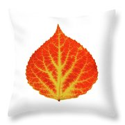 Red And Yellow Aspen Leaf 10 Throw Pillow