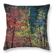 Red And Yellow Leaves Abstract Horizontal Number 1 Throw Pillow