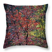 Red And Yellow Leaves Abstract Vertical Number 1 Throw Pillow