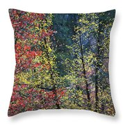 Red And Yellow Leaves Abstract Vertical Number 2 Throw Pillow