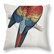 Red And Yellow Macaw Throw Pillow by Edward Lear