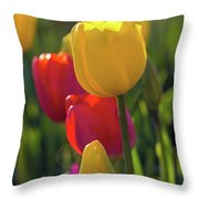Red And Yellow Tulips Closeup Throw Pillow