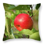 Red Apple On A Tree Throw Pillow