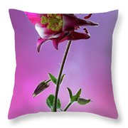 Red Aquilegia 2 Throw Pillow
