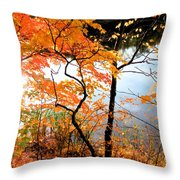 Red Autumn Leaves 5 Throw Pillow