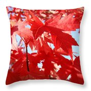 Red Autumn Leaves Art Prints Canvas Fall Leaves Baslee Troutman Throw Pillow