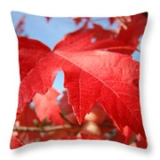 Red Autumn Leaves Fall Art Colorful Autumn Tree Baslee Troutman Throw Pillow