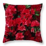 Red Azalea Blooms Throw Pillow