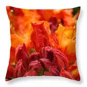 Red Azaleas Orange Azalea Flowers 9 Floral Giclee Art Prints Baslee Troutman Throw Pillow
