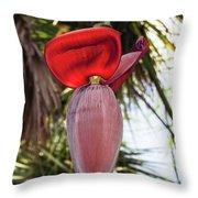 Red Banana Blossom Throw Pillow