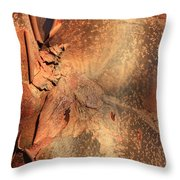 Red Bark Nature Abstract Throw Pillow