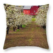 Red Barn Avenue Throw Pillow