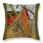 Red Barn Behind The Trees Throw Pillow
