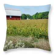 Red Barn In Pasture Throw Pillow